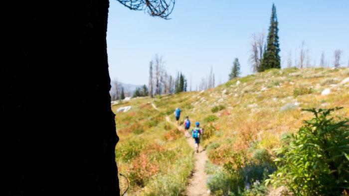 family hiking mountain trail