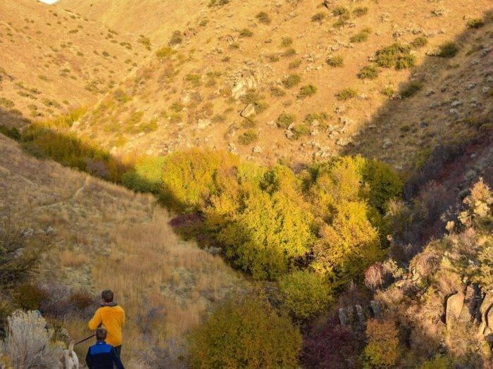 5 Fantastic Fall Hikes Near Boise | Visit Idaho