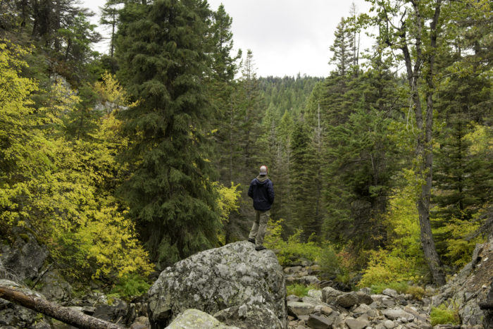 man standing on rock in surrounded by fall foliage.