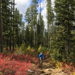 Louie Lake Trail is one hike you will want to do every year. Photo Credit: Christina McEvoy.