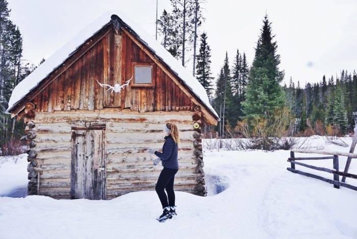 small cabin in the snow