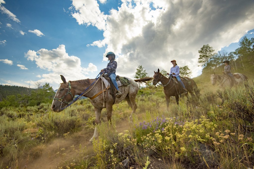 Three women ride horses through wildflowers in the Sawtooth Mountains.