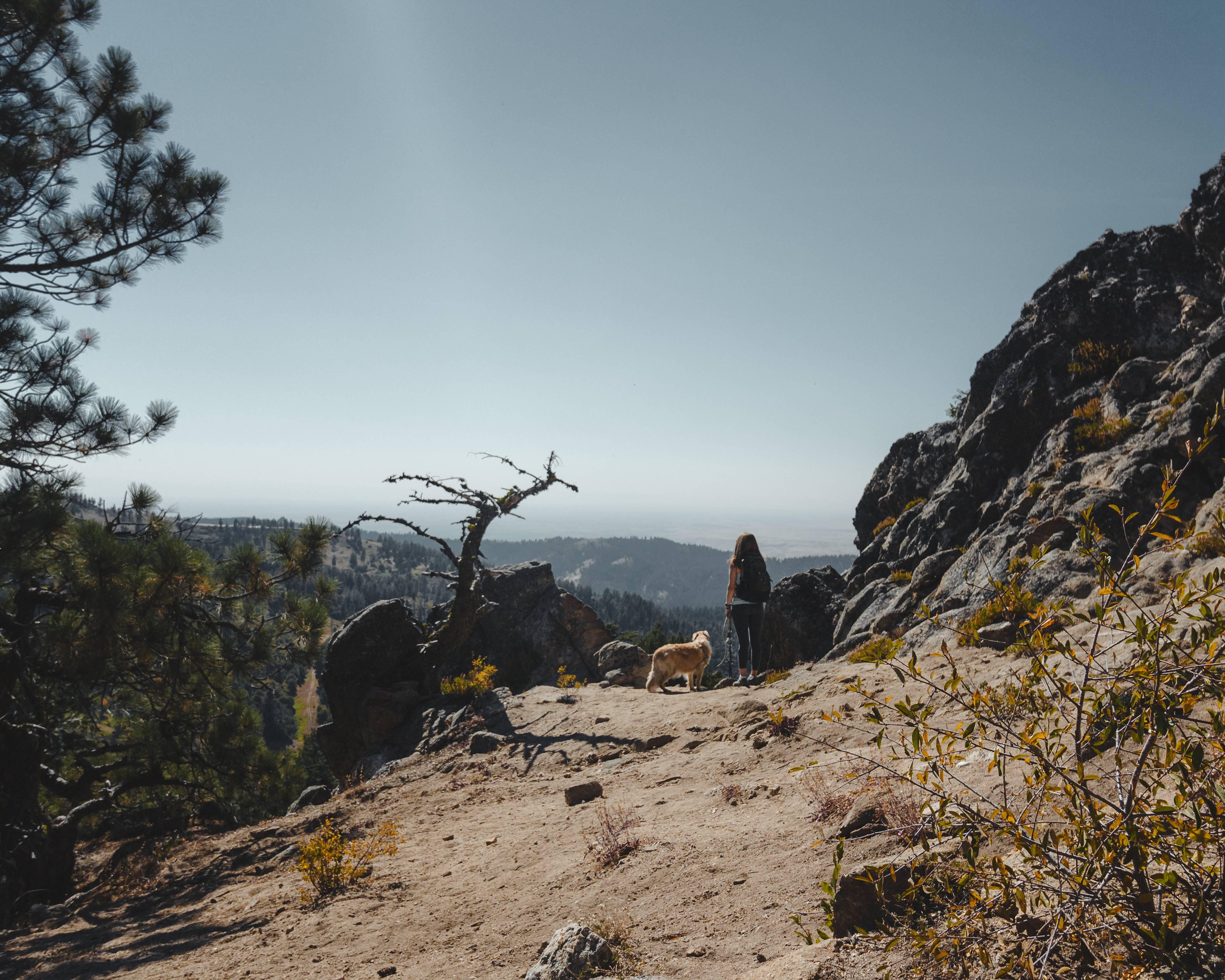 woman and dog on hike