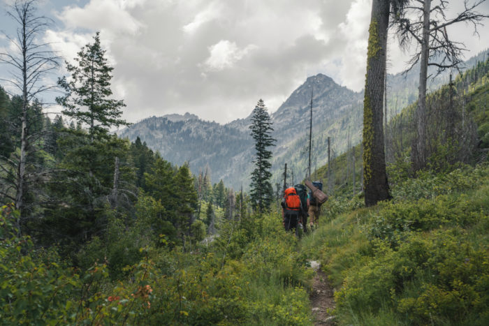 hikers on mountainside