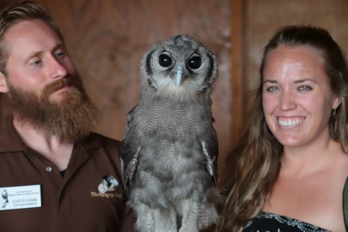 people with owl
