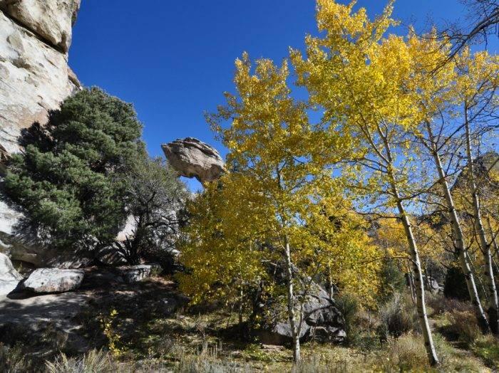 Walk this geologic wonder. Photo Credit: Scott Marchant.