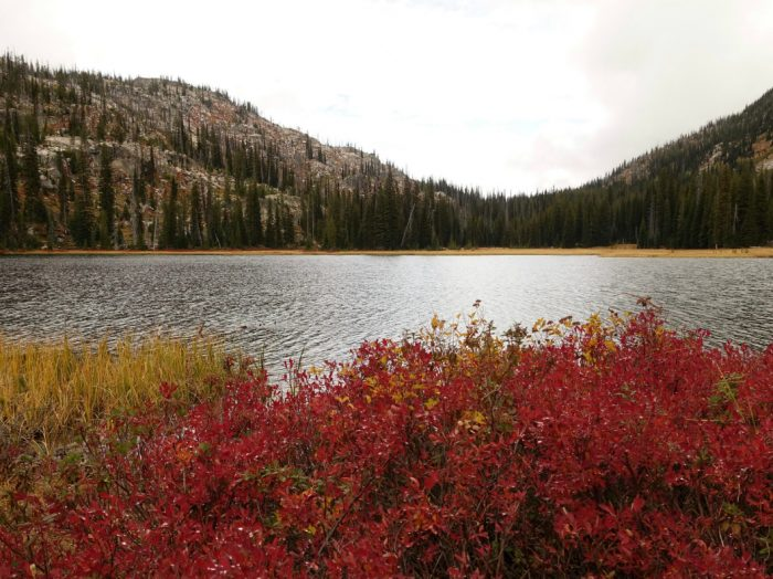 Duck Lake showcases fall foliage. Photo Credit: Scott Marchant.
