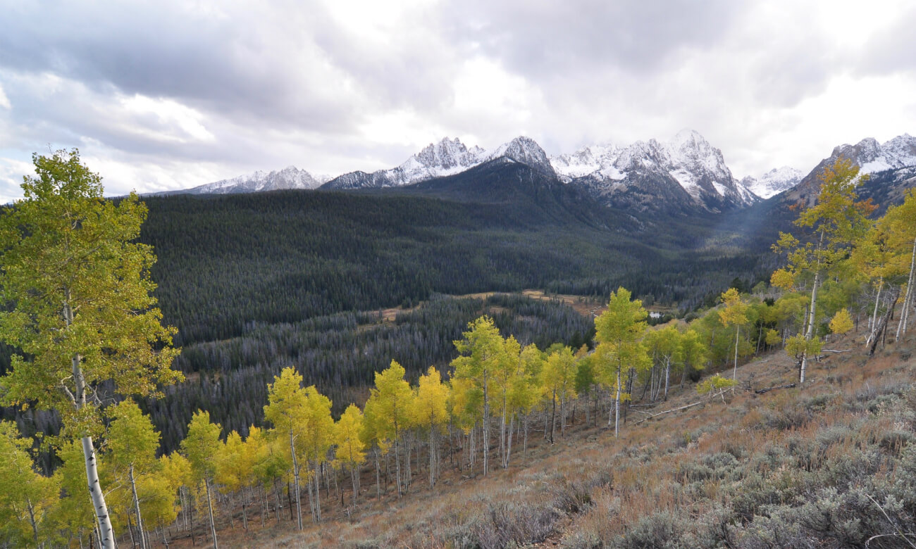 Head to the Sawtooth Mountains for fall colors. Photo Credit: Scott Marchant.