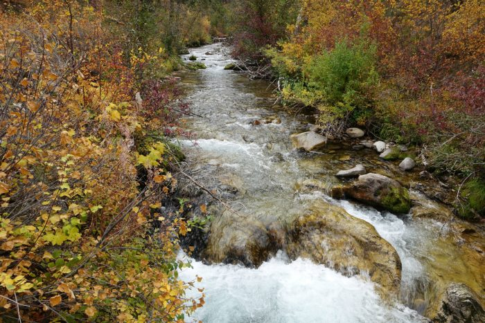 stream and fall colors