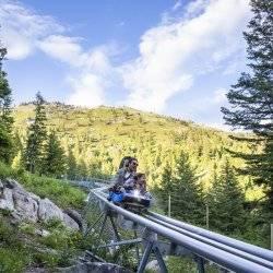 Glade Runner Mountain Coaster, Bogus Basin Mountain Recreation Area, Near Boise. Photo Credit: Idaho Tourism.