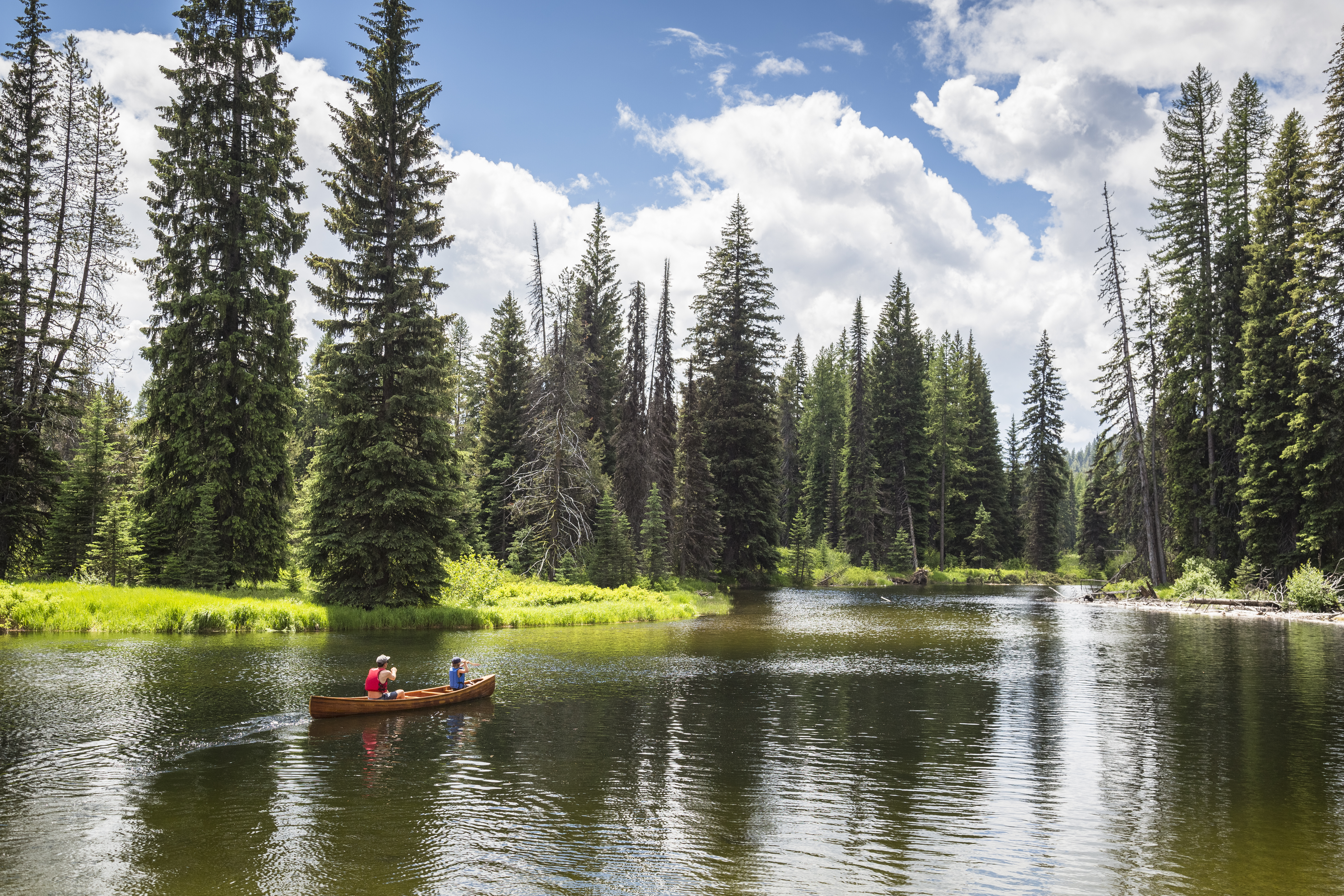A father and son canoeing on a river.