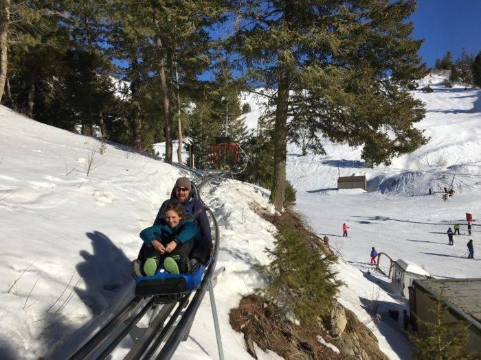 mountain roller coaster in snow