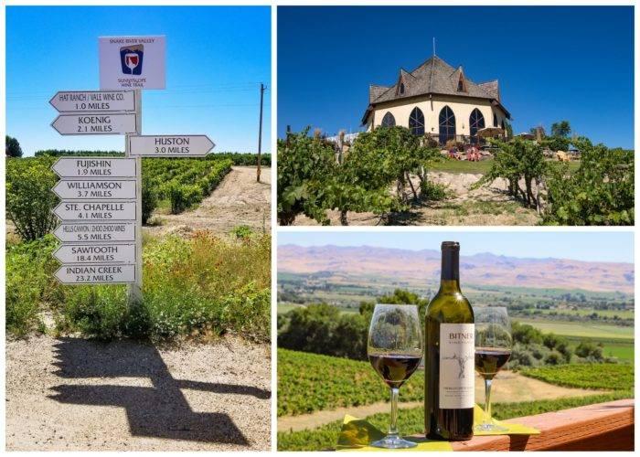 winery, wine bottle,signs