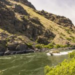 Jet boating, Hells Canyon, near Sheep Creek Ranch. Photo Credit: Idaho Tourism.