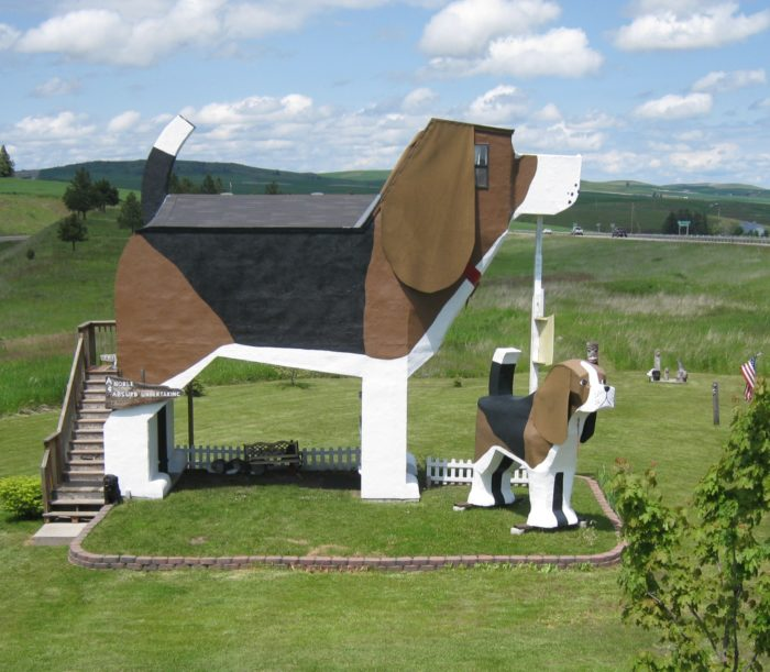 dog shaped hotel