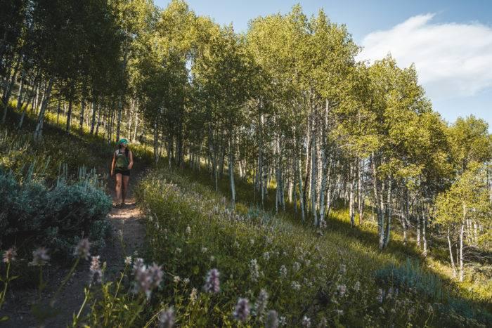 mounting hiking trail marshall ridge