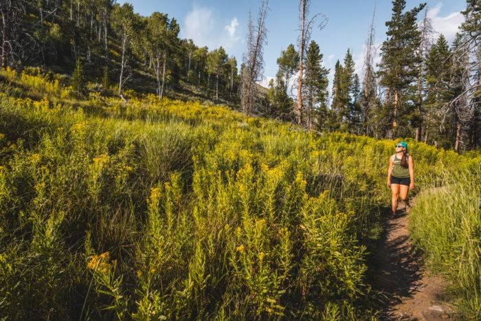 woman hiking mountain trail fishhook creek