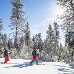 couple snowshoeing near idaho city