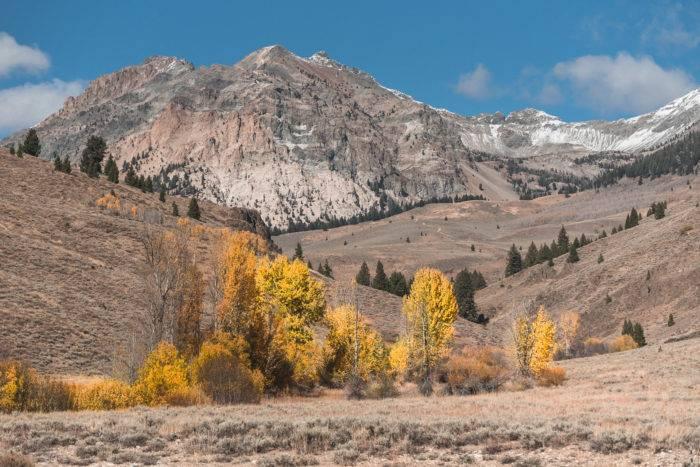 colorful fall foliage against mountain backdrop