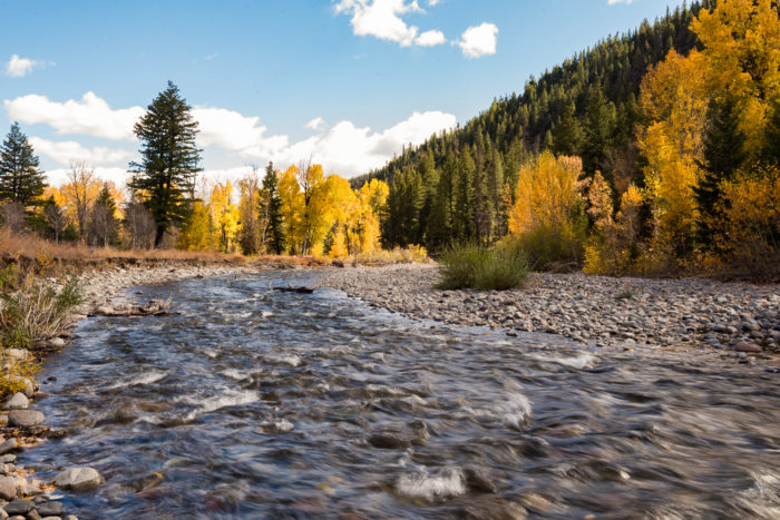 fall colors along harriman trail