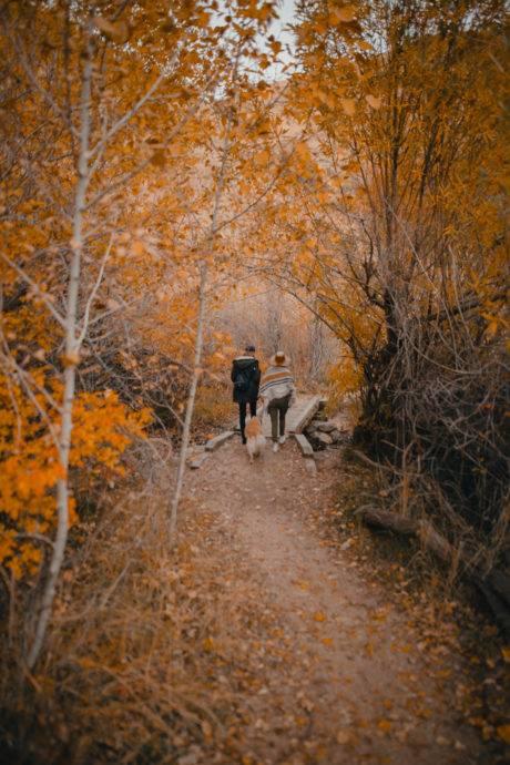 couple walking along fall trail