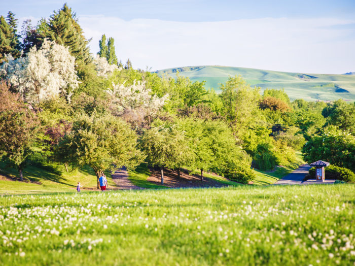Stroll through the University of Idaho arboretum. Photo Credit: Idaho Tourism.