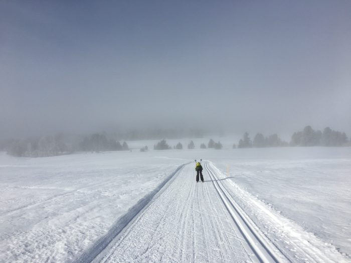 person nordic skiing