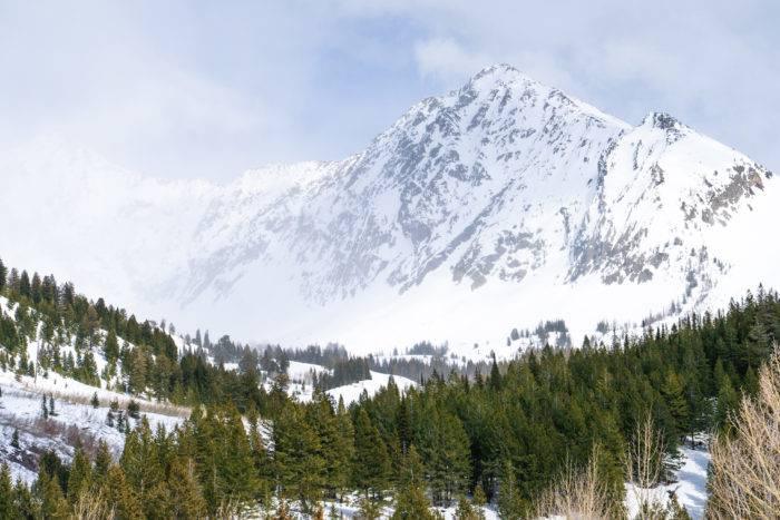 backcountry ski mountain