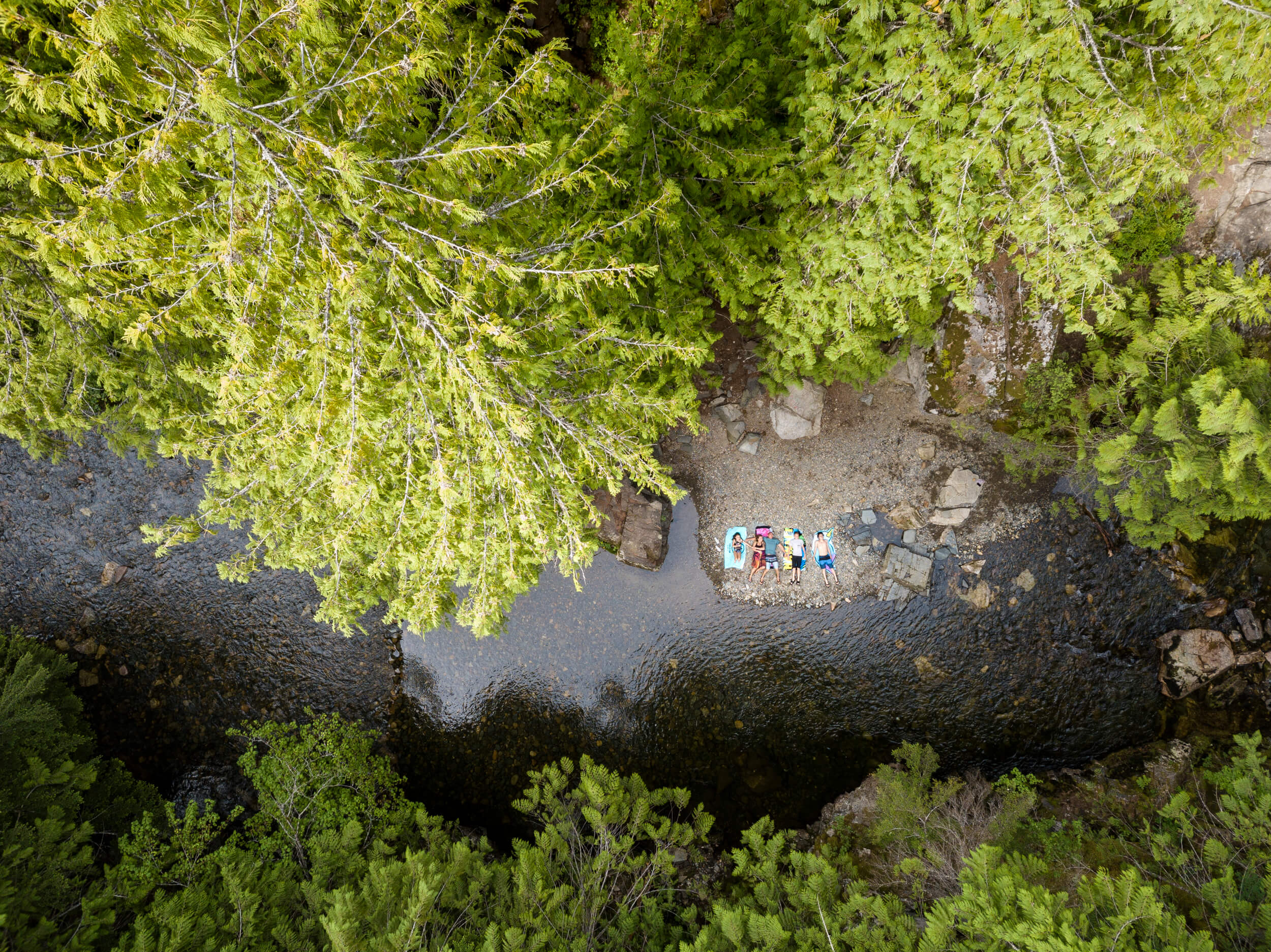 people sunbathing along the tree-lined riverbank at Western Pleasure