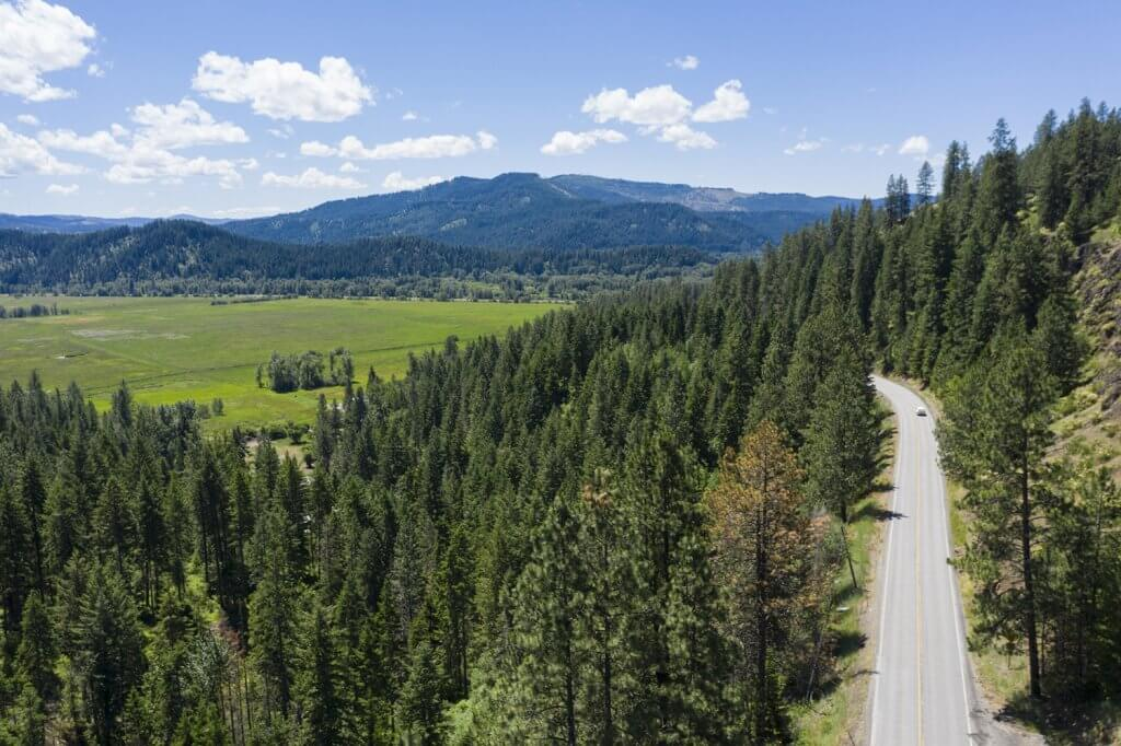 an overhead view of a road through a forest of trees with tree-covered mountains in the background