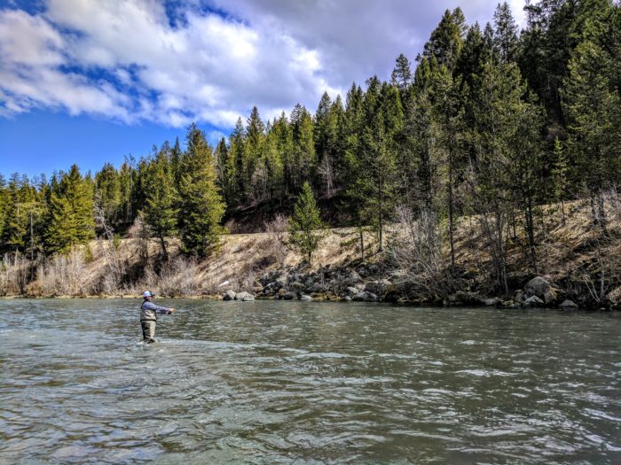person standing in river fly fishing