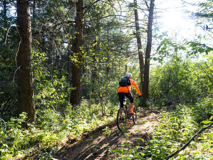 mountain biker in forest at kelly canyon