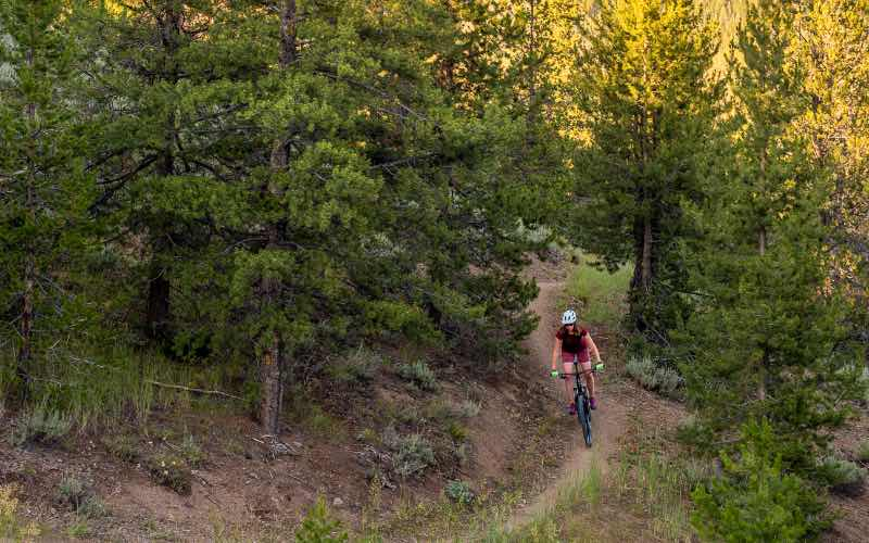 woman riding a mountain bike down a trail in a forest