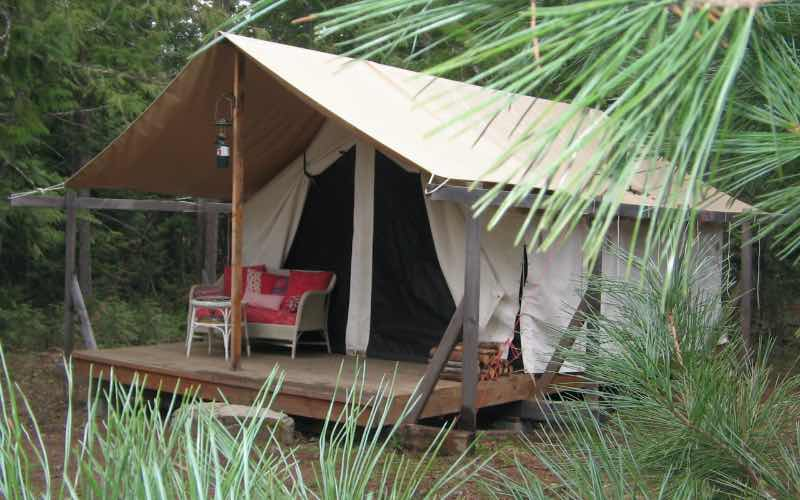 canvas tent set on top of a wooden floor in a forest