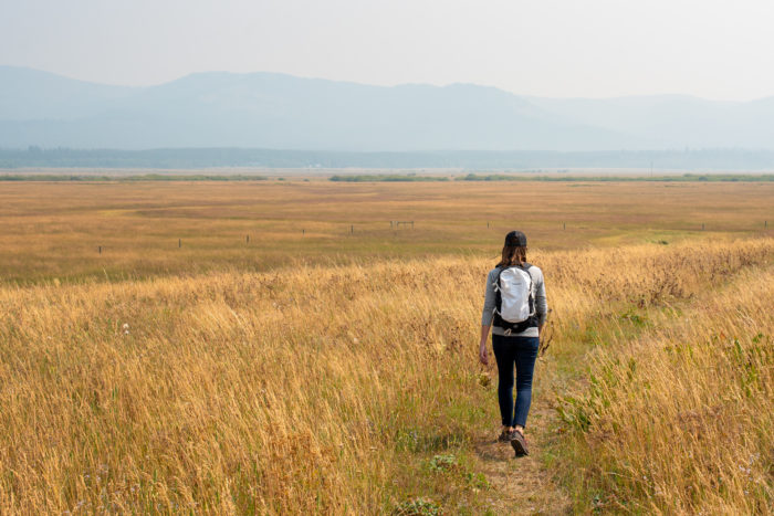 person walking in grasslands at Flat Ranch Preserve