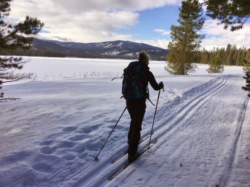 woman on cross-country skis in Harriman State Park