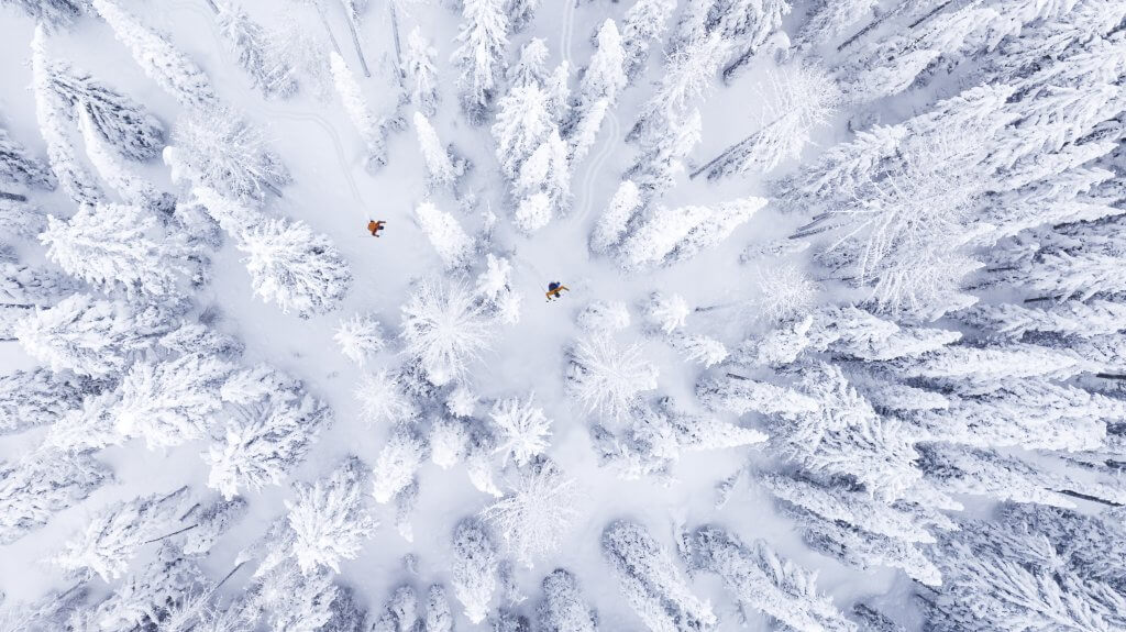 aerial overview of snowy trees and two skiers in red coats at Lookout Pass