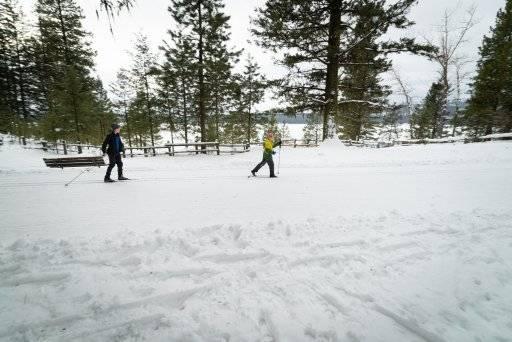 people cross country skiing in Ponderosa State Park