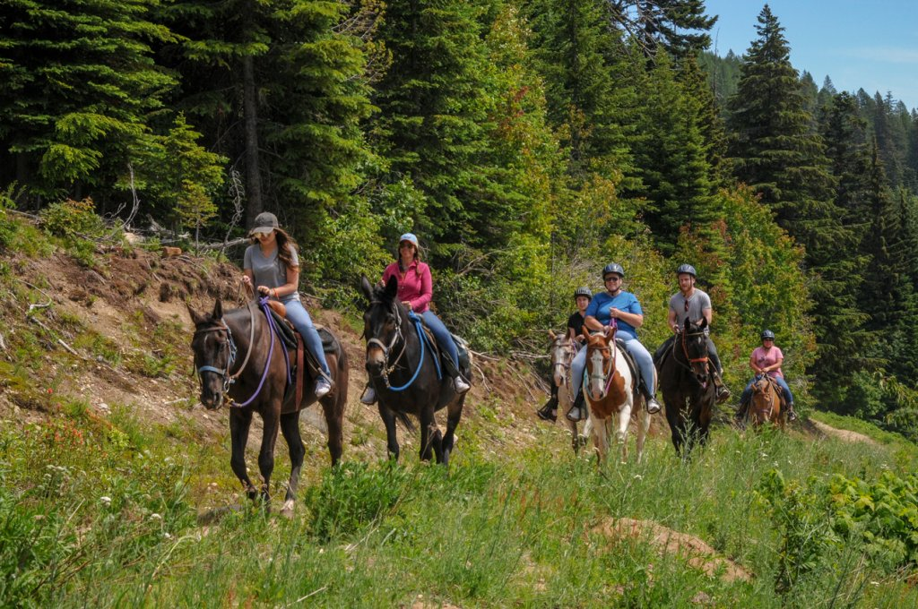 A group of 6 people ride horses surrounded by bright green trees and grass on Schweitzer Mountain in Idaho