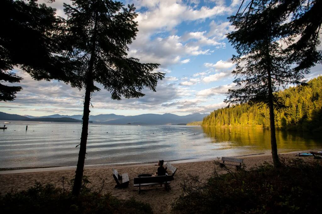 sandy beach with pine trees and view of lake