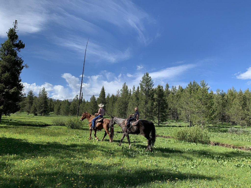 A man wearing a cowboy hat and a child ride horses through a grassy meadow, lined with pine trees on Eagle Ridge Ranch in Idaho