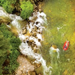 a birds-eye view of people paddling an orange raft on whitewater river lined with trees