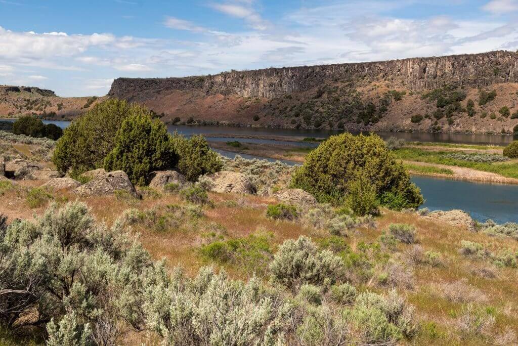 sage brush and river canyon at massacre rocks state park
