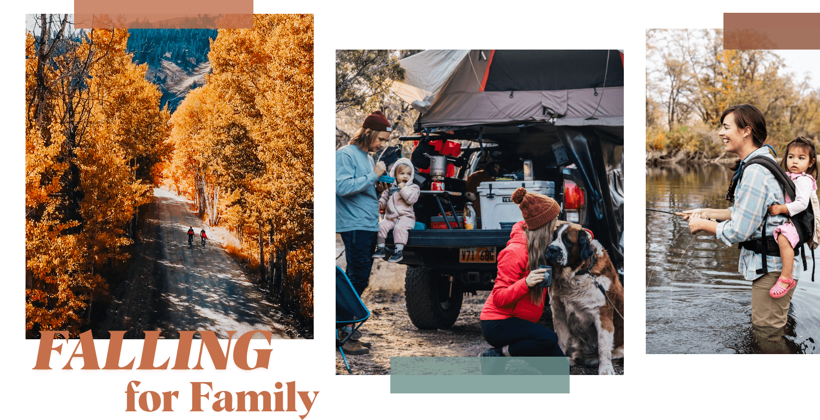 falling for family transparent graphic